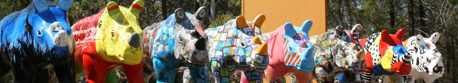 cropped-wild_rhinos_school_rhinos_completed_dec_2013_mq_6crop.jpg